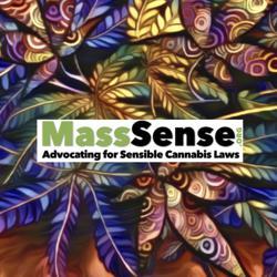 MassSense Talking Plants Clubhouse