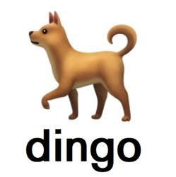 DINGO Clubhouse