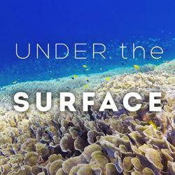 Under The Surface Clubhouse
