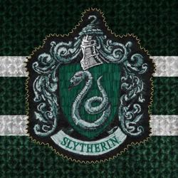 The Slytherins Clubhouse