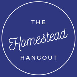 The Homestead Hangout  Clubhouse