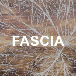 Fascia Quest  Clubhouse