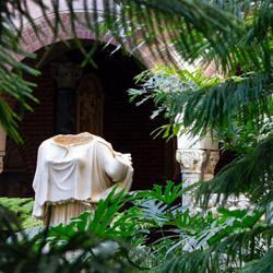 The Feminine's Sanctuary Clubhouse