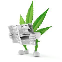 Cannabis News Clubhouse