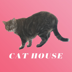 CAT HOUSE Clubhouse