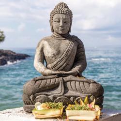 Buddha  Clubhouse