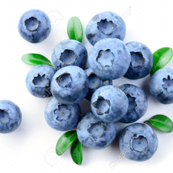 Blueberry Room Clubhouse