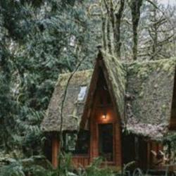 يه كلبه وسط جنگل Clubhouse