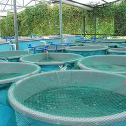 Aquaculture Talks Clubhouse