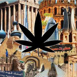 Arabs In Cannabis  Clubhouse