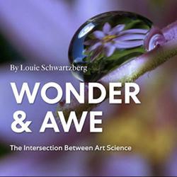 Wonder & Awe Clubhouse