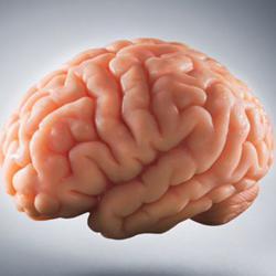 Brainwave Entrainment Clubhouse