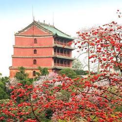 廣州人 Cantonese Clubhouse