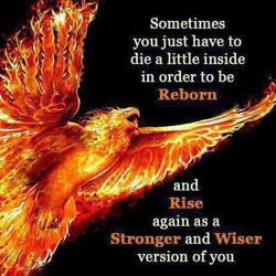 Rise like a Phoenix !  Clubhouse
