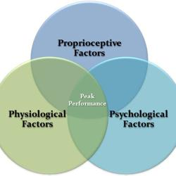 Health & Performance Clubhouse