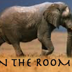 ELEPHANT In The Room  Clubhouse