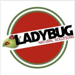 Ladybug Wellness  Clubhouse