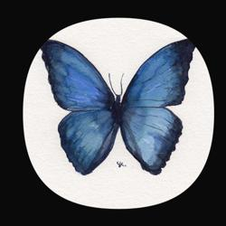 Butterfly Effects Clubhouse