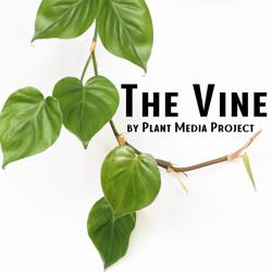 The Vine  Clubhouse