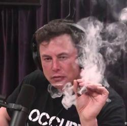Elon's Next Move Clubhouse