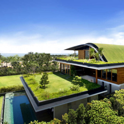 Organic Home Clubhouse