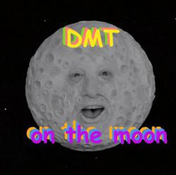 DMT on the Moon 🌚 Clubhouse