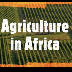 Agriculture in Africa Clubhouse