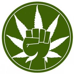 Chicago Cannabis Collaborative  Clubhouse