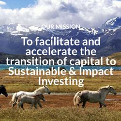 SUSTAINABLE INVESTING Clubhouse