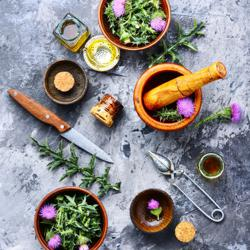 Herbalism for Modern Day Wellness Clubhouse