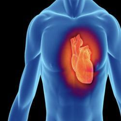 Kalp,Nefis,Ruh ve İnsan Clubhouse