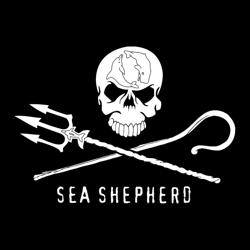 Seashepherd Clubhouse