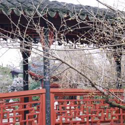 Sinosphere: 讀書 學術 雜談 Clubhouse