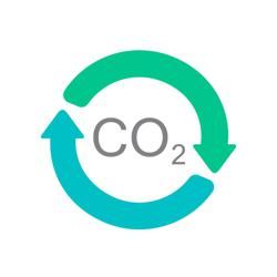 Carbon Offsets Clubhouse