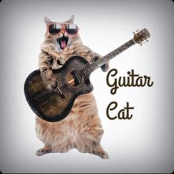 Fingerstyle Guitar Clubhouse
