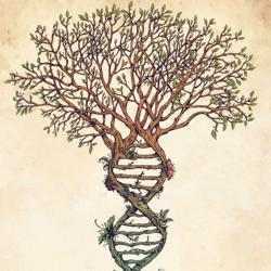 Rootsalogy: Genealogy For Those Searching their African and African American Roots and Ancestry Clubhouse