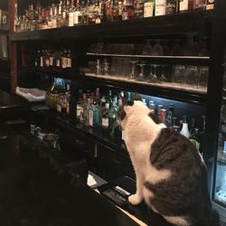 夜の談話室(飲酒・喫煙目的店) Clubhouse