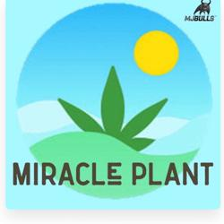 The Miracle Plant Clubhouse