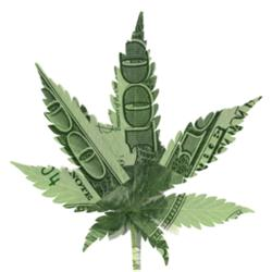 CANNABIS INVESTING CLUB Clubhouse