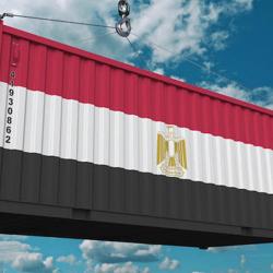 Egypt Exports / Amazon  Clubhouse