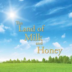 Milk&'Honey Team !!  Clubhouse