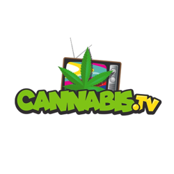 Cannabis.TV  Clubhouse