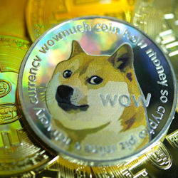 Doge coin fundamentals! Clubhouse